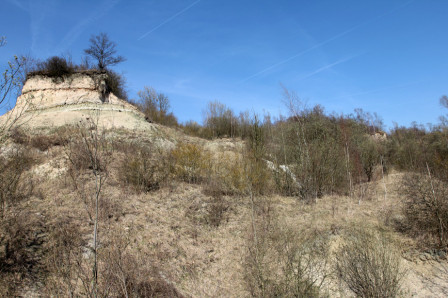 Letellier_22032011_Panorama_03.jpg