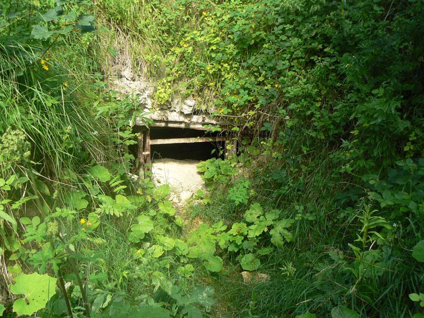 04 08 2008 a la d couverte de la carri re du beauzet ou chronique d 39 une balade en solitaire - Jardin sauvage st roch l achigan colombes ...
