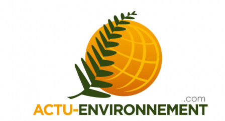 Actu-Environnement.jpg