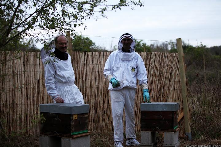 Jardin des abbesses les ruches sont arriv es les for Au jardin info